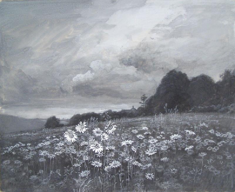 Walworth Stilson landscape of a daisy meadow (lot#240)
